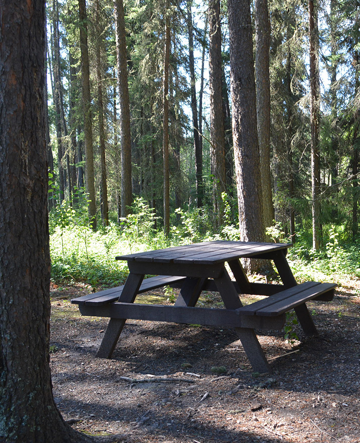 Outdoor Picnic Area - Whitecout Lions Campground - Day Use Area